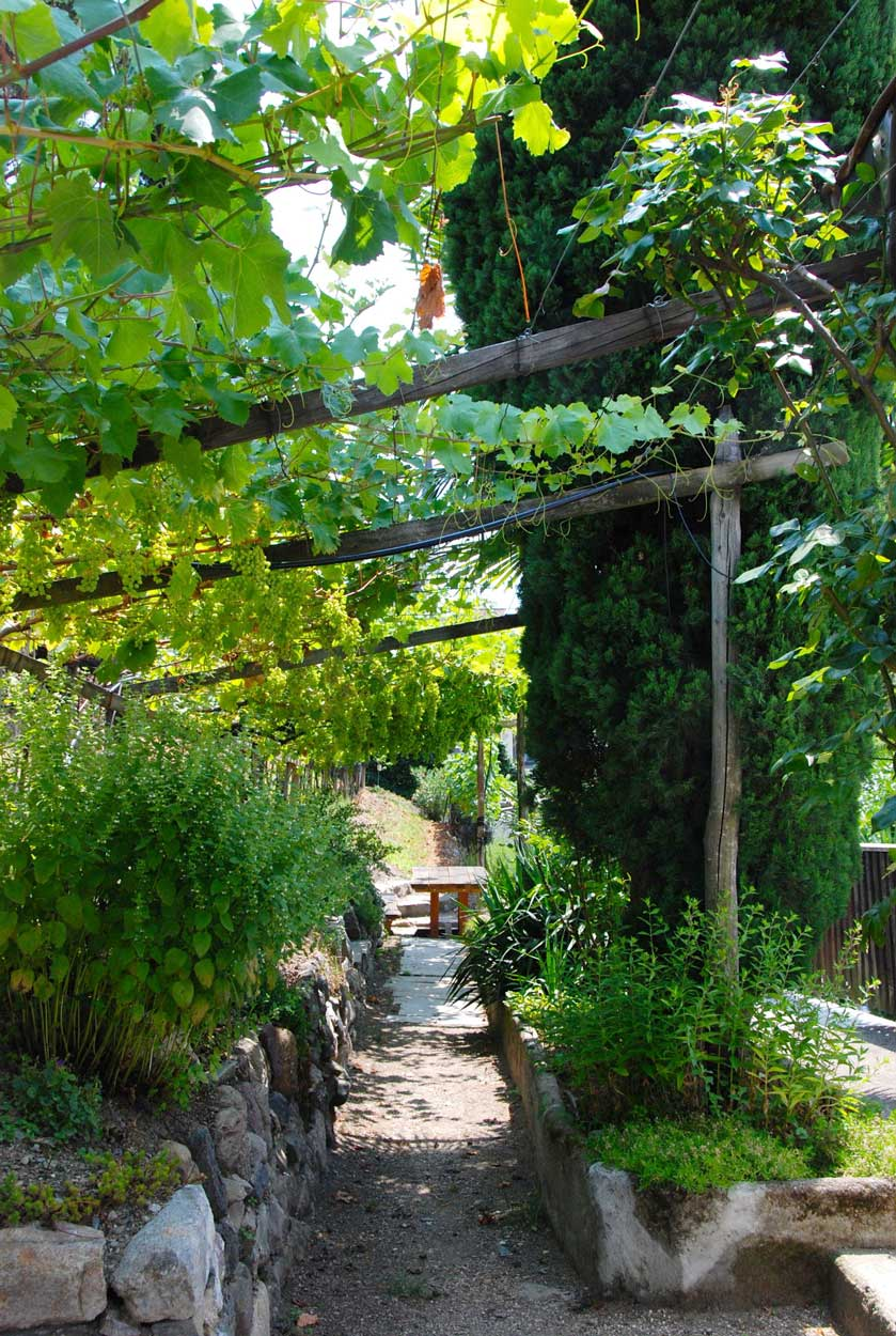 garten Pension Ottmanngut in Meran