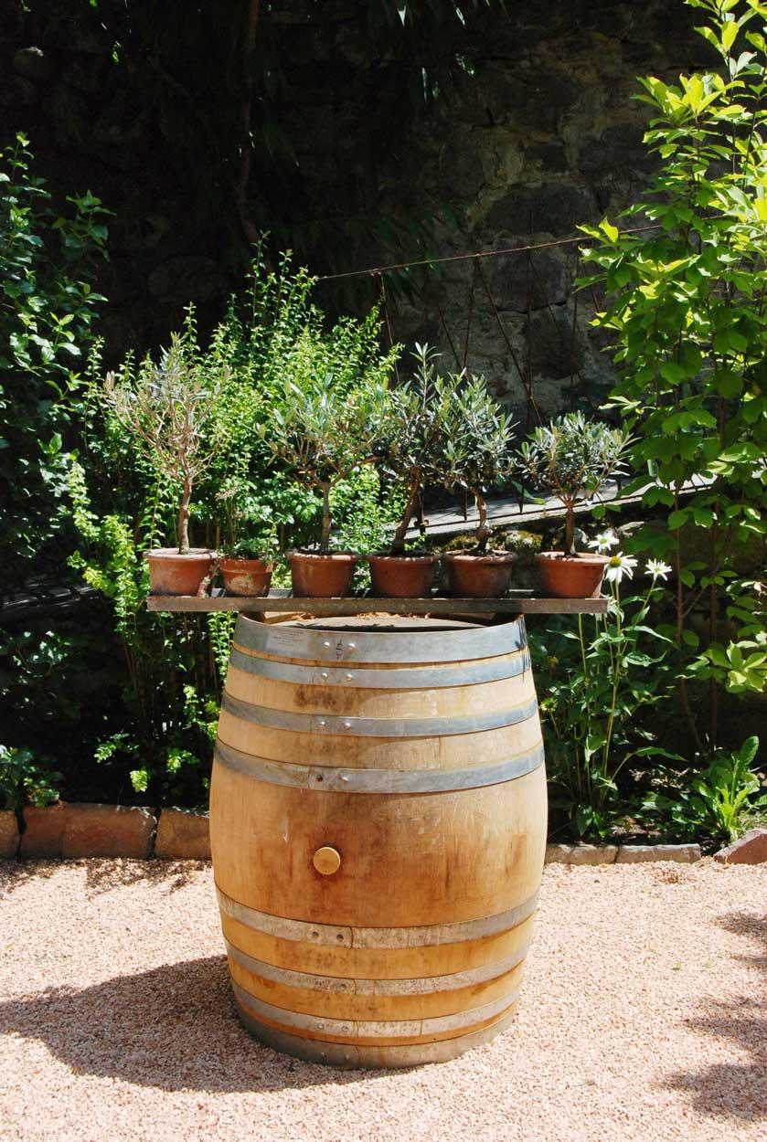 Kräuter im Garten der Pension Ottmanngut in Meran