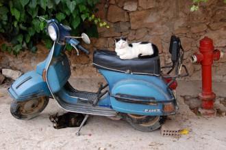 das beste hotel in chania entdeckt und Katzen gefunden