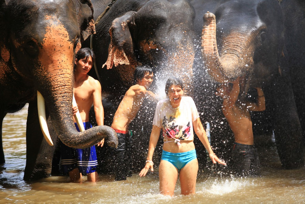 Elefantencamp-in-chiang-mai-patara-elefant-farm-smart-family-trave_7835
