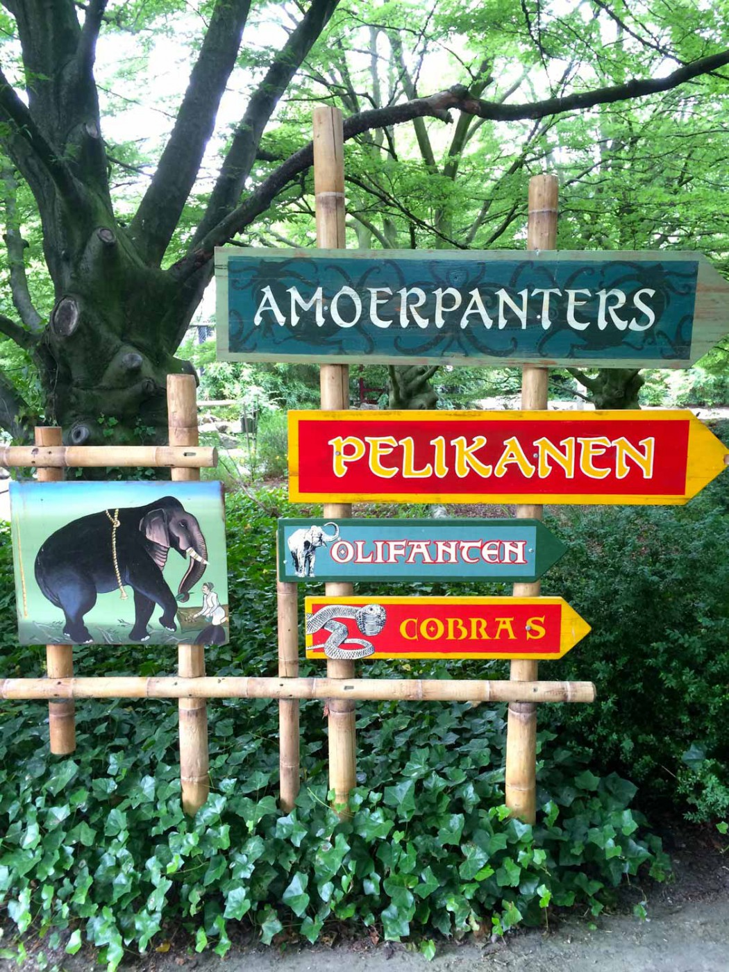Zoo-rotterdam-smart-family-travel_1590