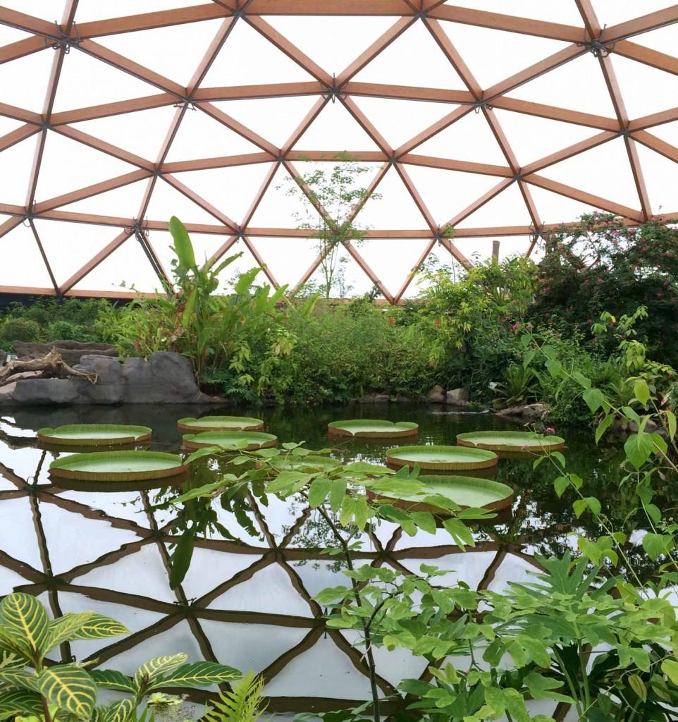zoo-rotterdam-smart-family-travel_1607