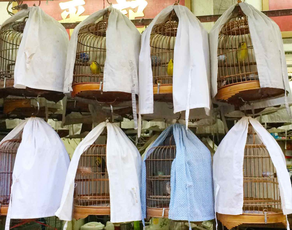 vogelmarkt-hongkong-©looping-magazin