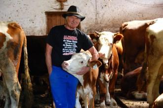 Helmut der Senner aus dem Kaisertal inmitten seiner Kühe