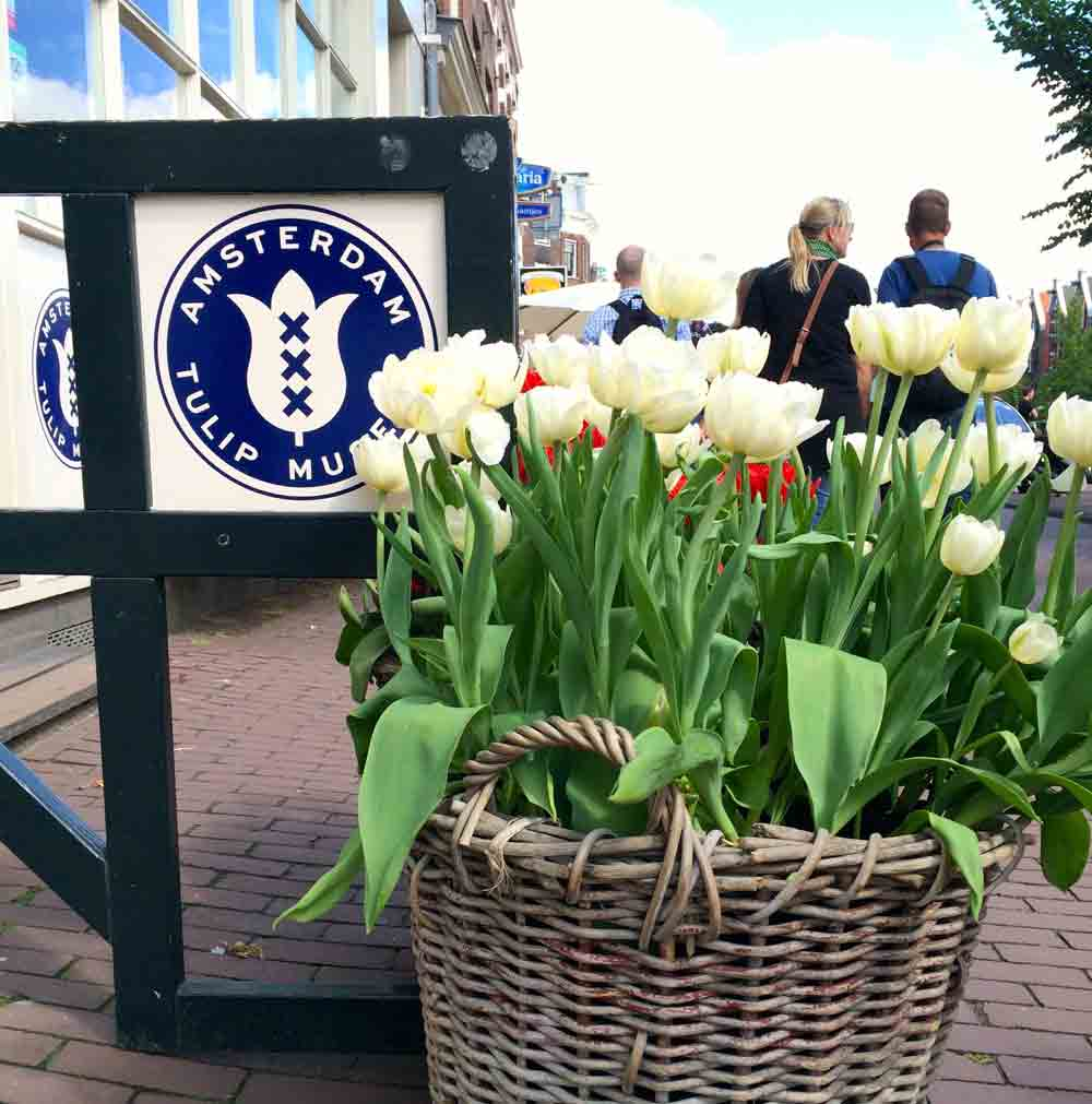 Foodtour durch Amsterdam Tulpenmuseum