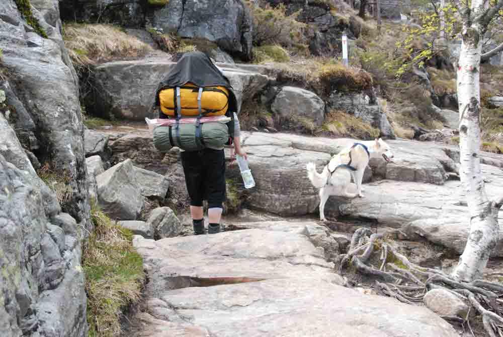 Aufstieg-Preikestolen-mit-Hund