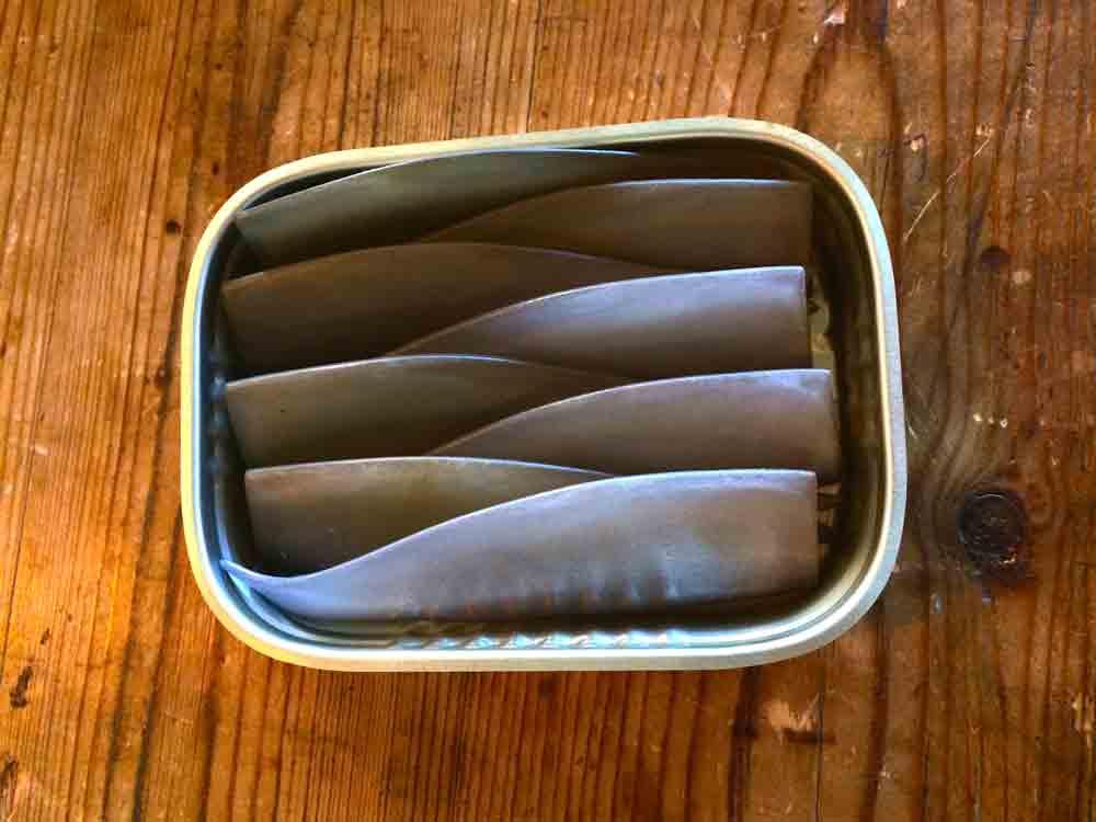 Musterdose-mit-Sardinen