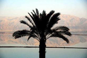 Vom Toten Meer in die Wüste Negev ©looping-magazin