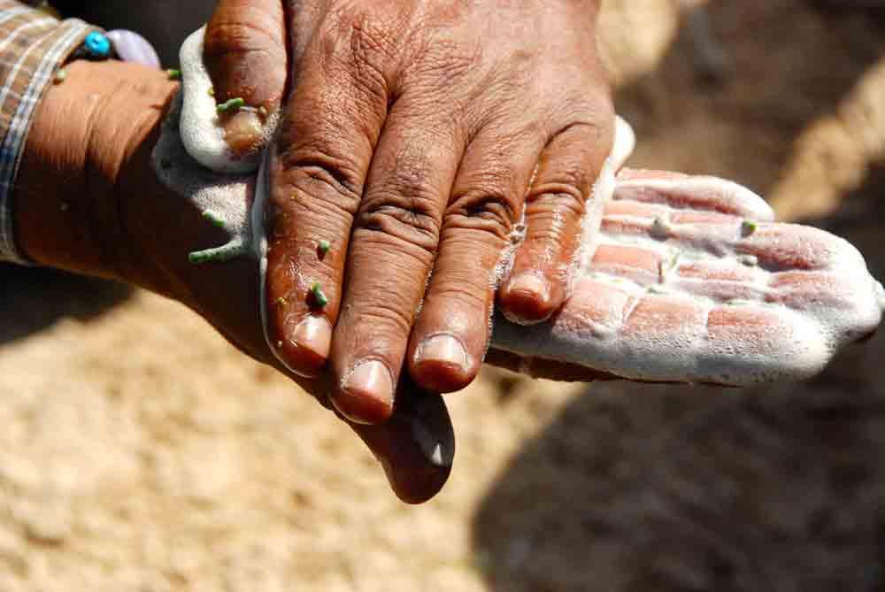 Vom Toten Meer in die Wüste Negev ©looping-magazin Hände waschen mit Wüstenseife