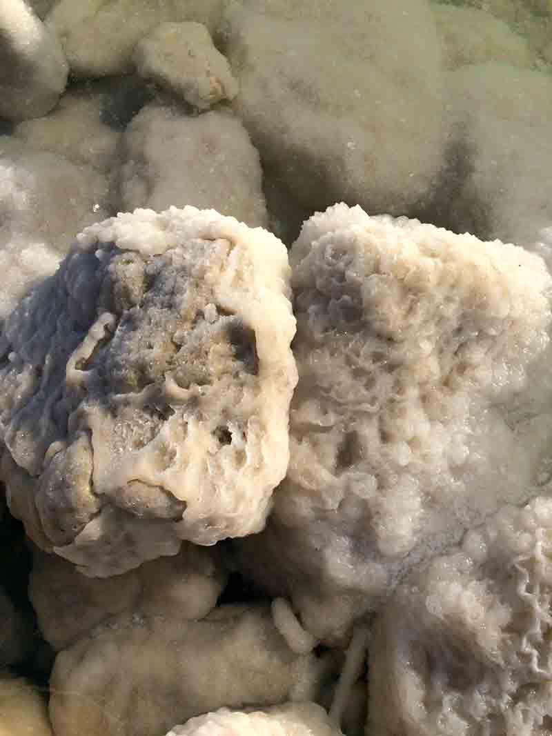 Vom Toten Meer in die Wüste Negev ©looping-magazin Salzkristalle