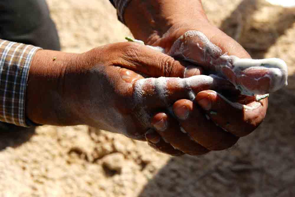 Vom Toten Meer in die Wüste Negev ©looping-magazin Seife aus Wüstenpflanzen