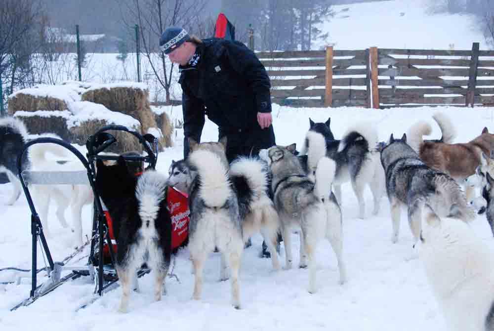 Lilia-im-Hundeschlitten-huskyranch-Angerberg_2009