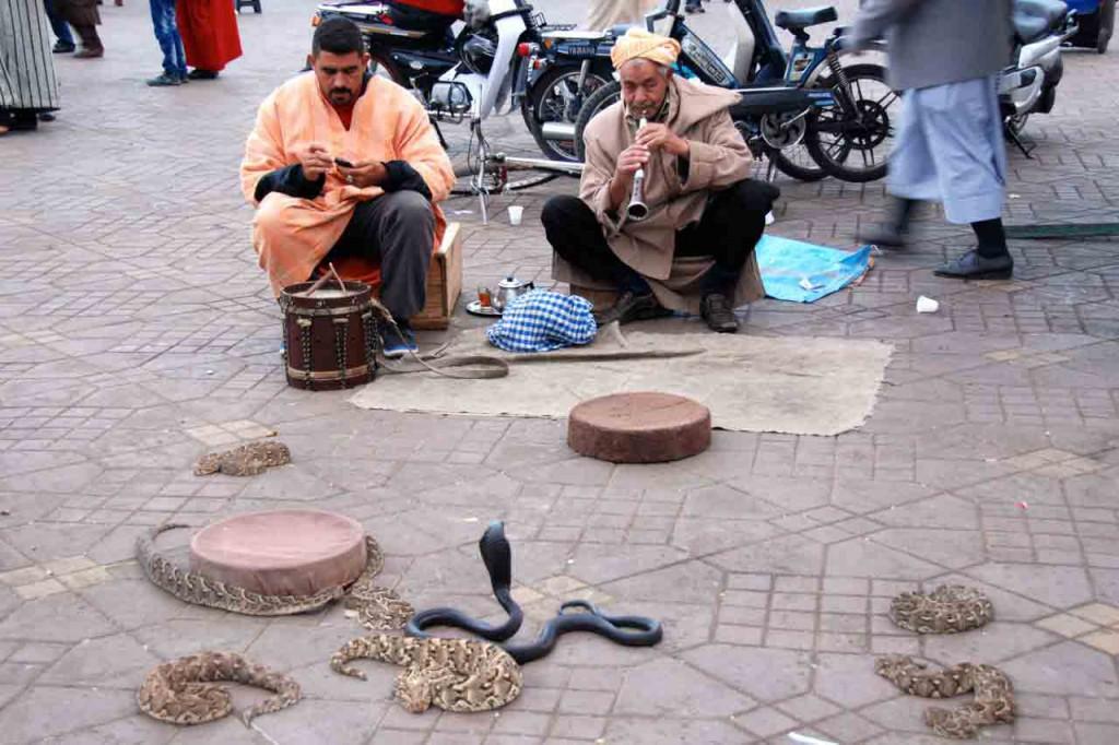 schlangenbeschwoerer-Marrakesch