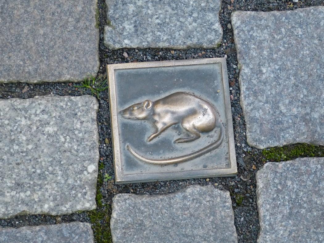 Deutsche Märchenstrasse Hameln