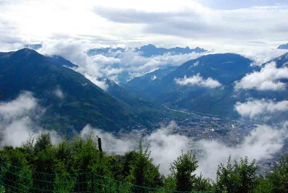 nebel-steigt-auf-urlaub-auf-dem-bauernhof-suedtirol-roter-hahn-©looping