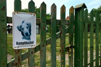 kampfdackel-Brandenburg-©looping
