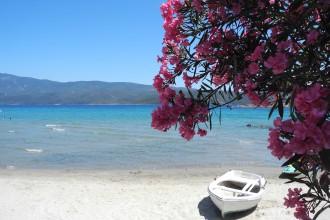Reisetipps für Samos