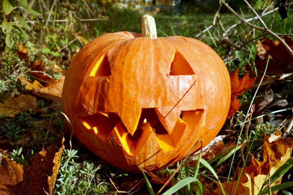 perfekter kuerbis halloween basteln