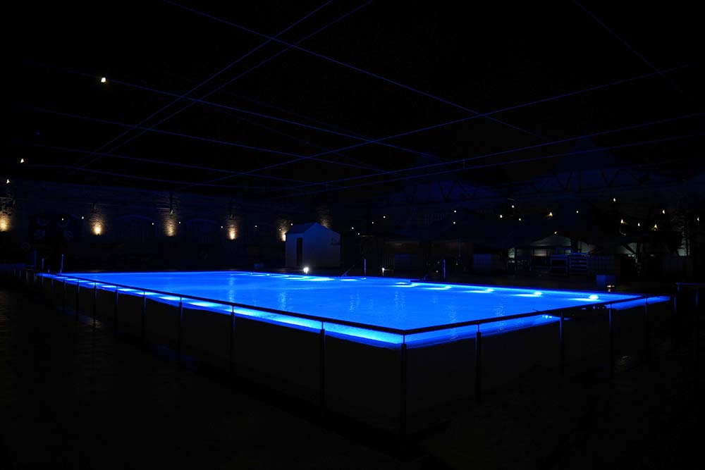 Haubentaucher Berlin Pool Winter Night