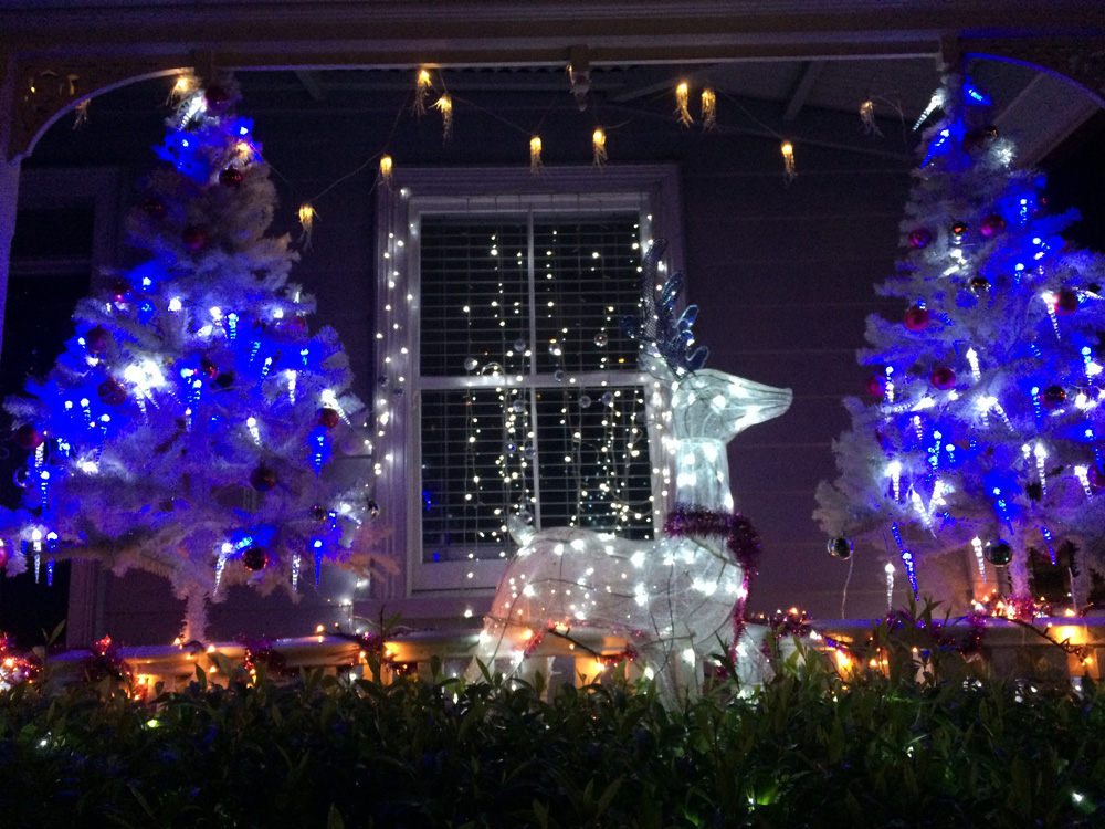 weihnachten-in-auckland-loopingmagazin