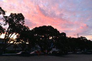 Das Ende einer Reise. Warme Weihnachten in Neuseeland. Teil 3