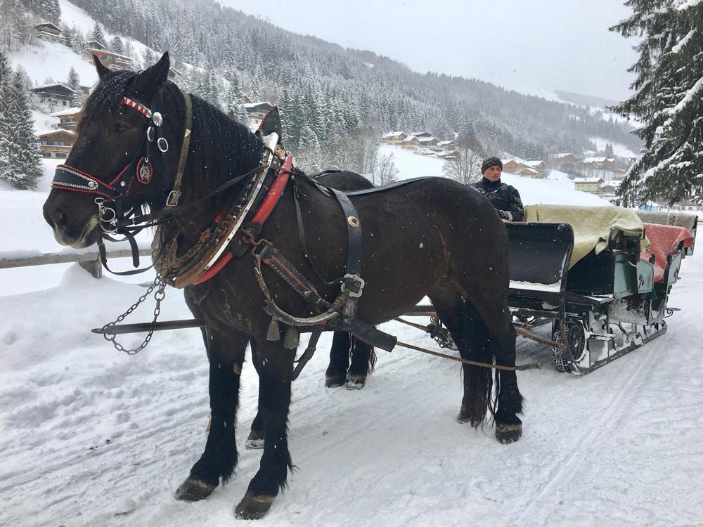 Pferdeschlittenfahrt-Start-storybase-2017-©loopingmagazin