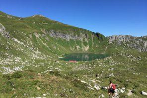 Wandern im Allgäu – hoch, höher, Gipfelkreuz