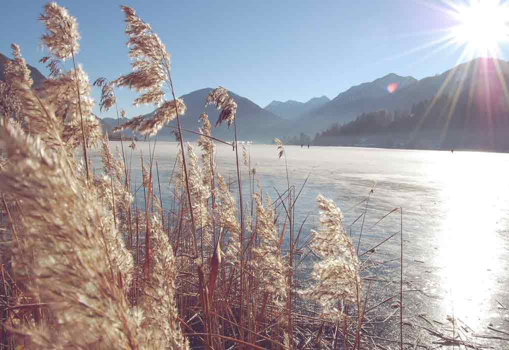 gralhof-am-weissensee-winter