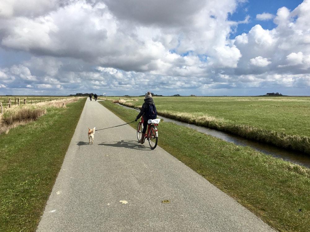 Fahrradtour Tipps für den Urlaub auf der Hallig Langeneß