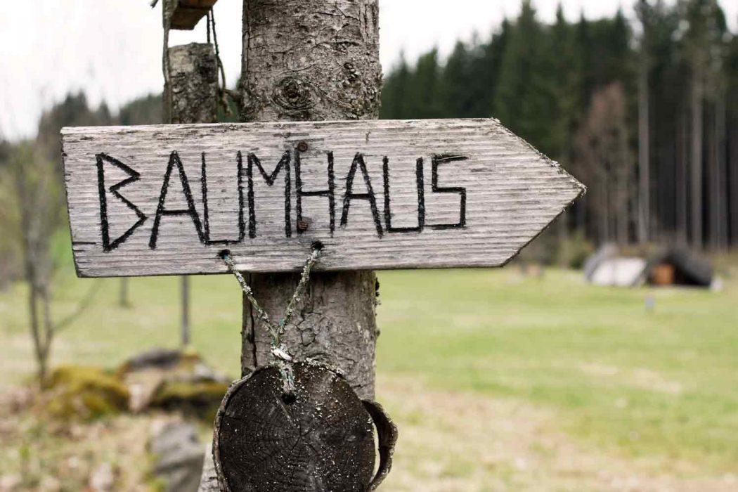Wildniscamp am Falkenstein