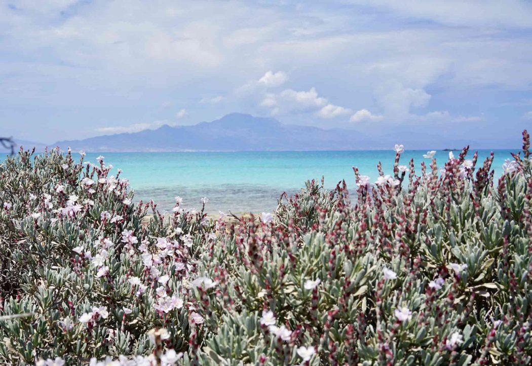 Chrissi Island, die unbewohnte Insel südlich von Kreta