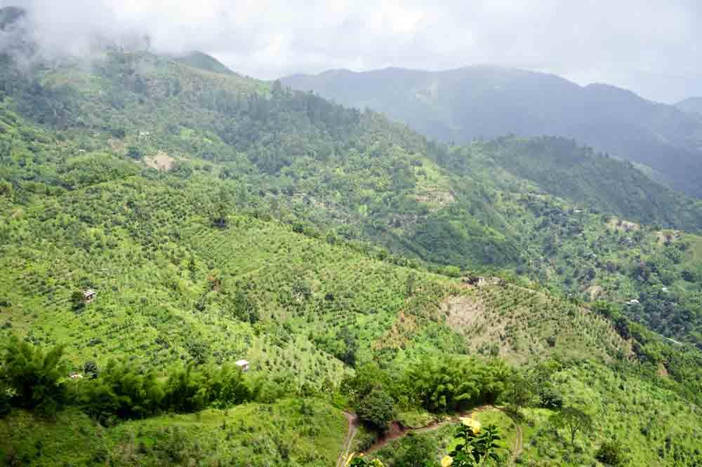 Ausblick auf die Blue Mountains Jamaika