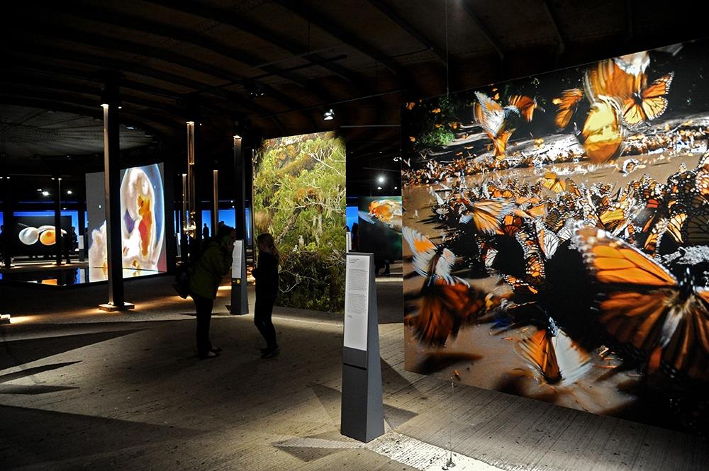 Ruhrgebiet Aktivitäten Ausstellung im Gasometer