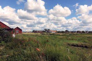 Südschweden Roadttrip, ein Schwedischer Sommernachtstraum