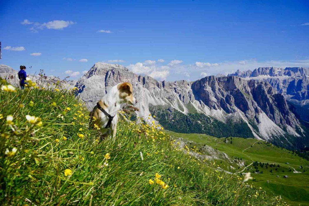 Trekkingtour in den Dolomiten