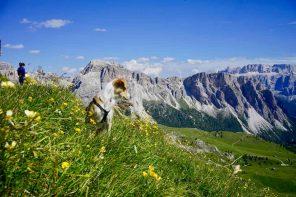 Wandern mit Kind und Hund. Mehrtägige Trekkingtour in den Dolomiten.