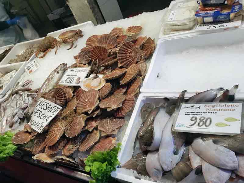 Fisch und Muschen auf dem Rialto Fischmarkt in Venedig