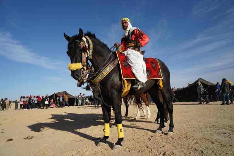 Sahara Festival Douz reiter auf geschmuecktem Pferd