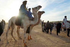 Sahara Festival in Douz. Wettkampf am Rand der Wüste von Tunesien