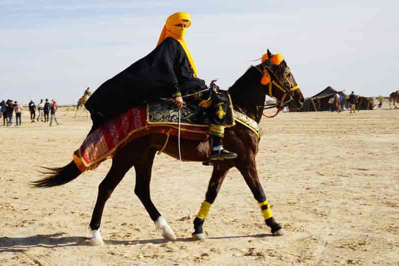 Sahara Festival Douz stolzer Reiter