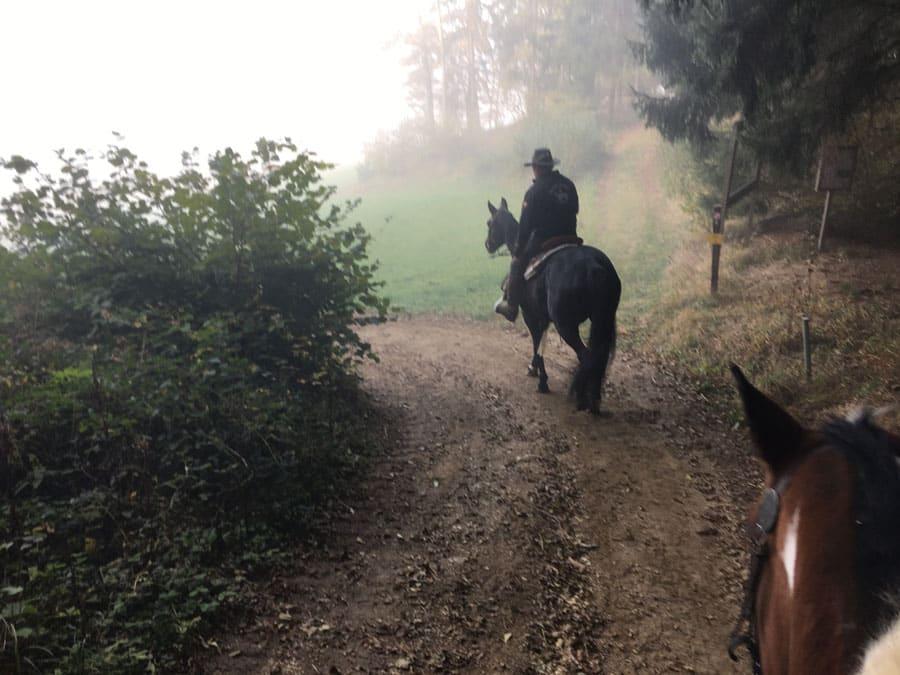 Wanderreiten Oberösterreich