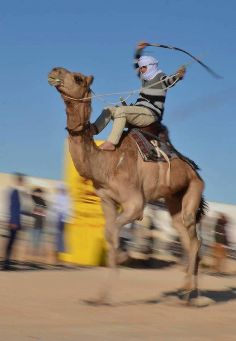 Jockey Kamelrennen in Tunesien