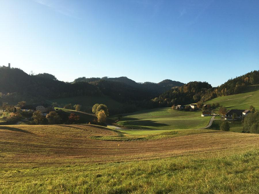Wanderreiten Österreich durch schöne Landschaft