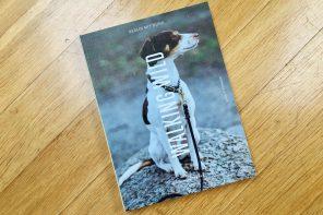 Walking wild. Das neue Buch für alle in Berlin mit Hund.