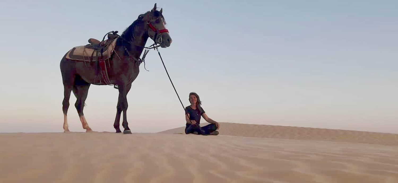 Reiten auf einem Berberpferd in Tunesien