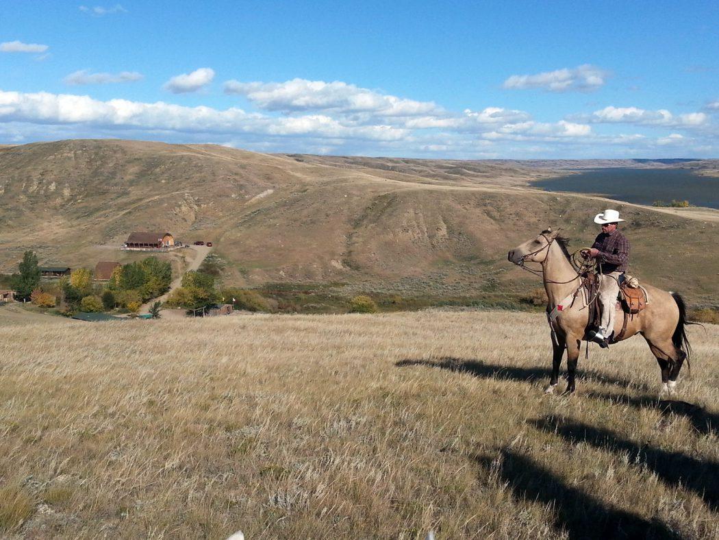Cowboy Saskatchewan