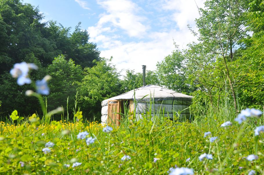 Ferienhaus in der Natur mitten auf der Wiese