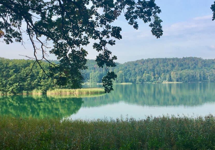 Mountainbike-Tour Berlin Brandenburg. Blick auf den schwermuetzelsee